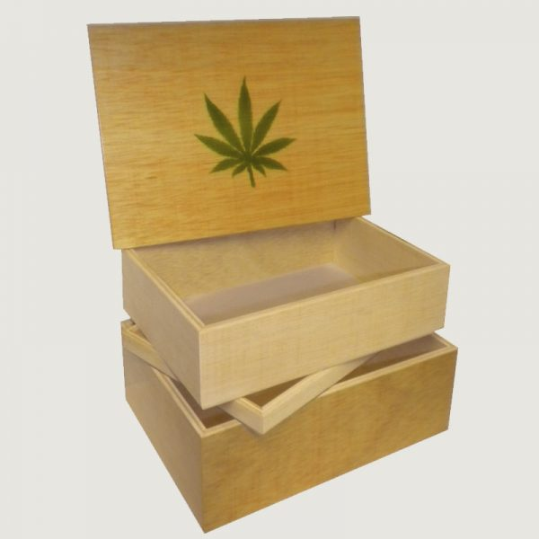 Caja de curado Jaizkibel